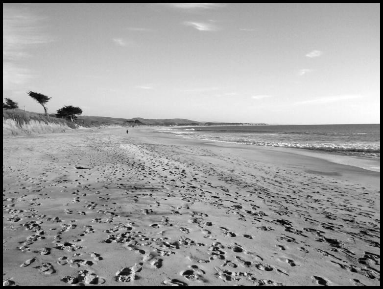 california beach, hmb