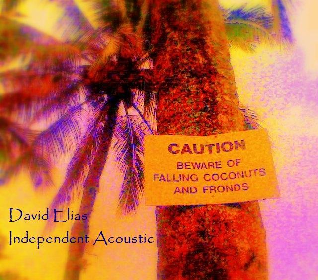 David Elias - Independent Acoustic