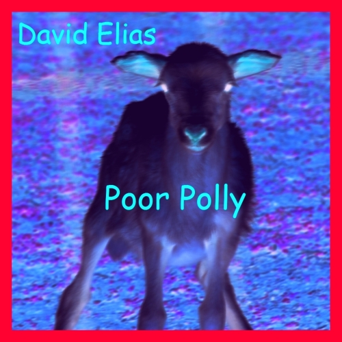 David Elias - Poor Polly
